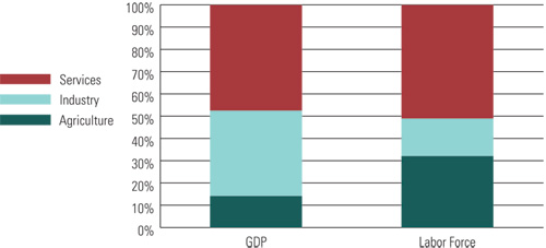 Sectoral Composition of Egyptian GDP and Labor Force (2008)
