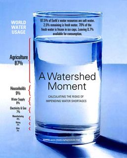 World Water Usage